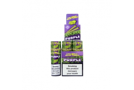 Cyclones Hemp Purple 2x12 per Box