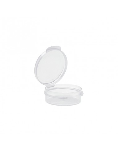 Transparent PP Container with Hinged...