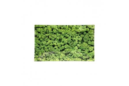 Glass Rolling Tray - Buds - L 26x16cm